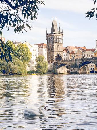 Bridge Magazine - Prague