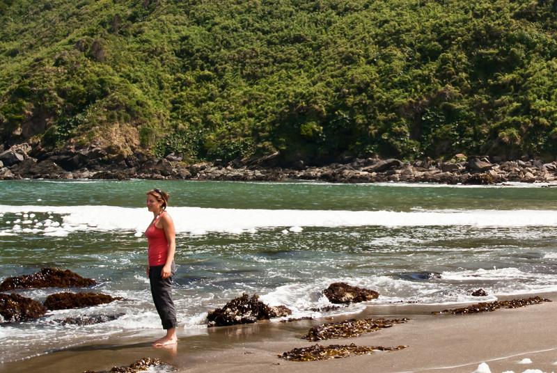 Valdivia 201201 Curinaco (31).jpg
