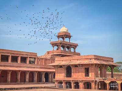 4 Agra - Feb 10