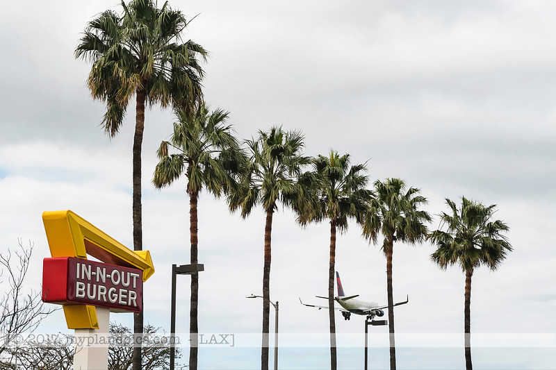 F20170219a110216_7998-IN-N-OUT Burger.jpg