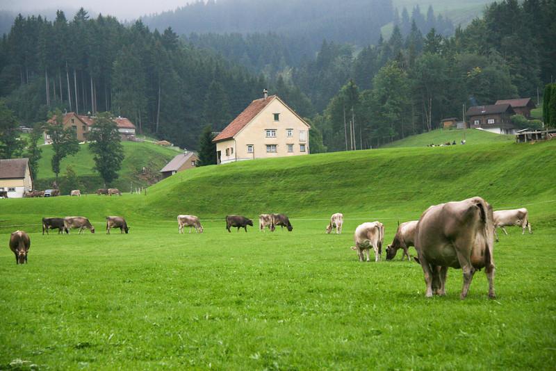 2010-Switzerland-Italy 138.jpg