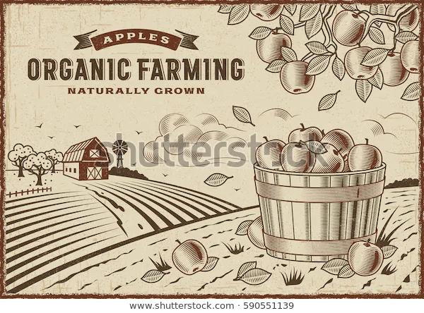 apple-organic-farming-landscape-editable-600w-590551139.jpg