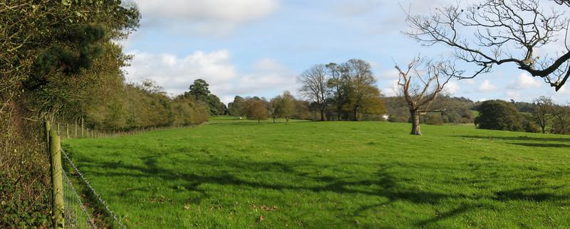 Saltram Park