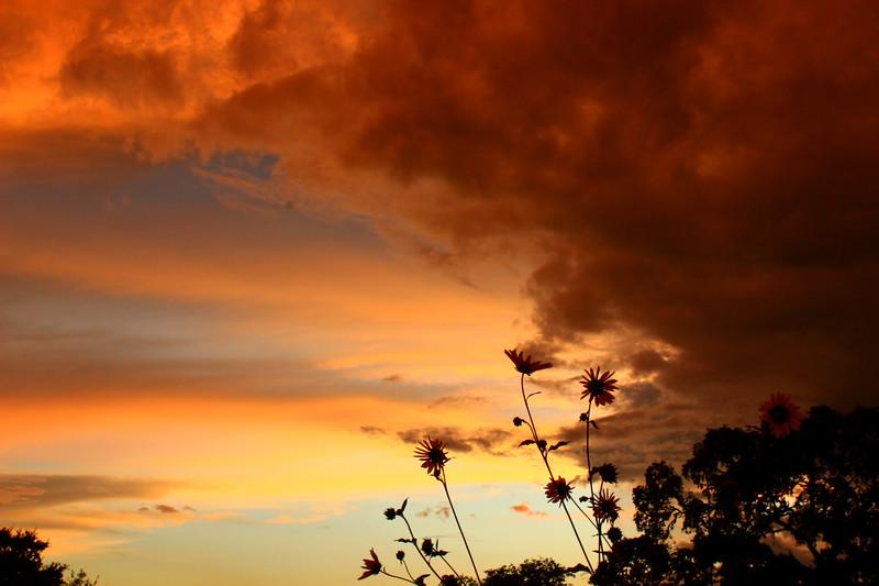 sunset 6-17-15 104.jpg