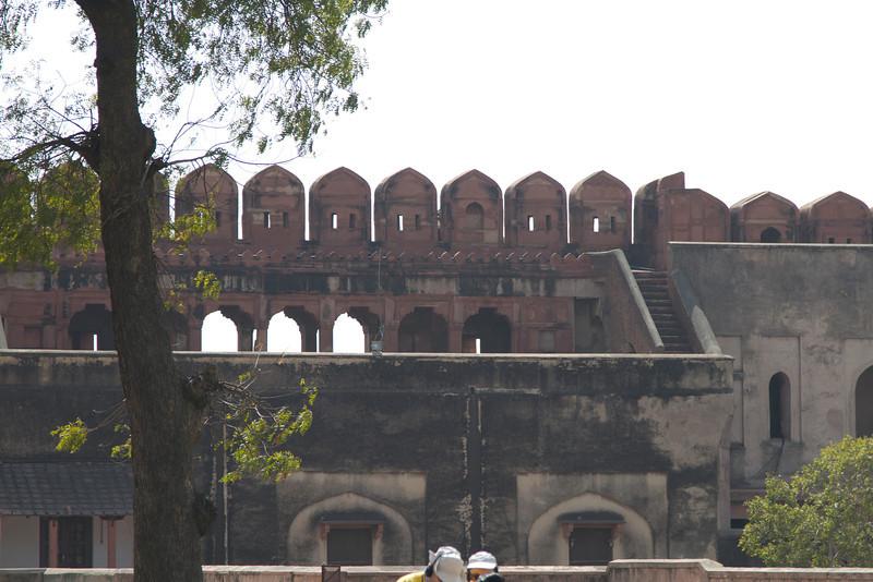 India_2012Feb-6108.jpg