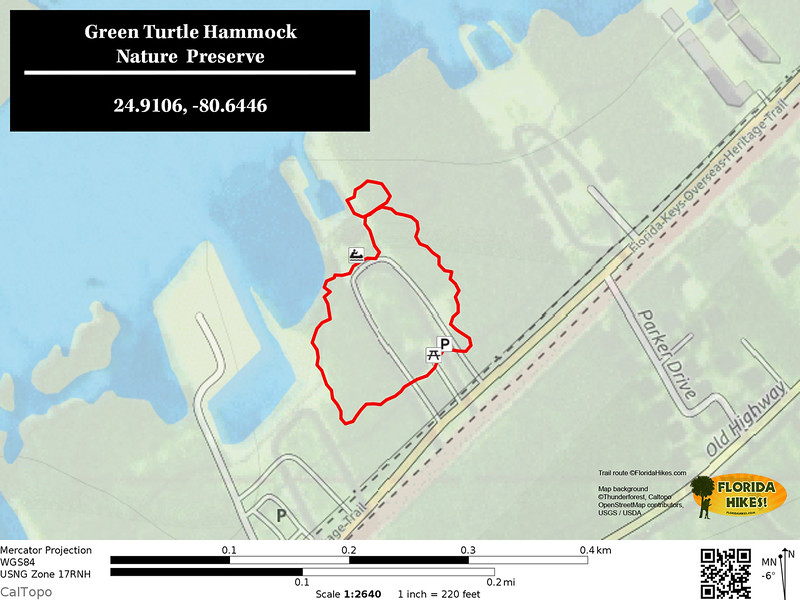 Green Turtle Hammock trail map