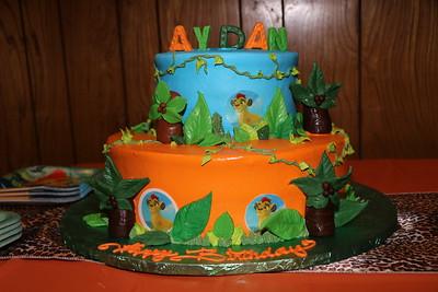 Aydan's 1st Birthday