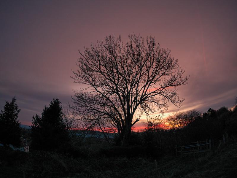 Lewes Sunrise
