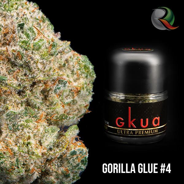 gorillaglue1.jpg