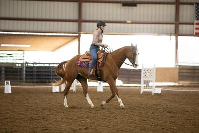 Horse 28
