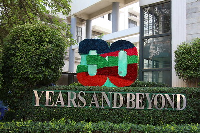 30 years' celebrations - Unveiling of logo