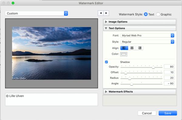 Watermark Editor - Text options