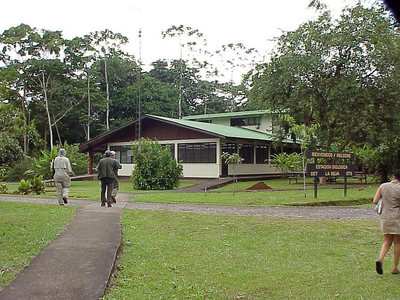 La Selva Costa Rica 2-11-03 (50898170)