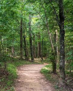 Carolina Thread Trail - Waxhaw