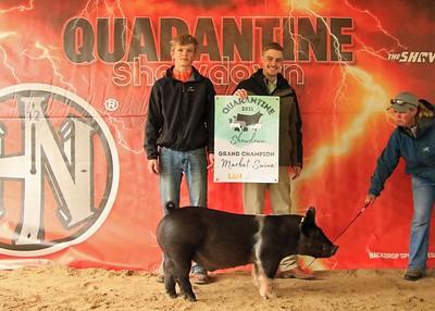 Saturday Swine Show