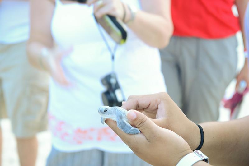 Cancun-20120913-1485--2090296581-O.jpg