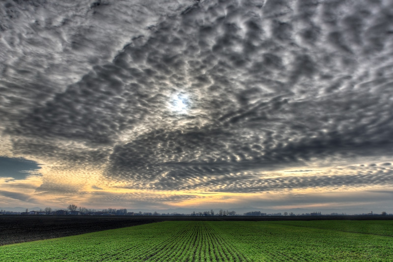 Farmland - Sant'Agata Bolognese, Bologna, Italy - December 21, 2011