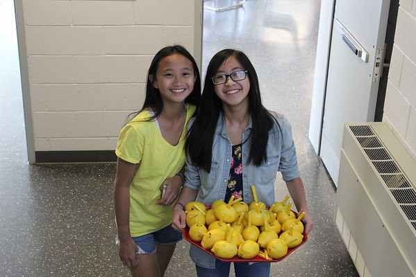 MS supports Alex's Lemonade Stand
