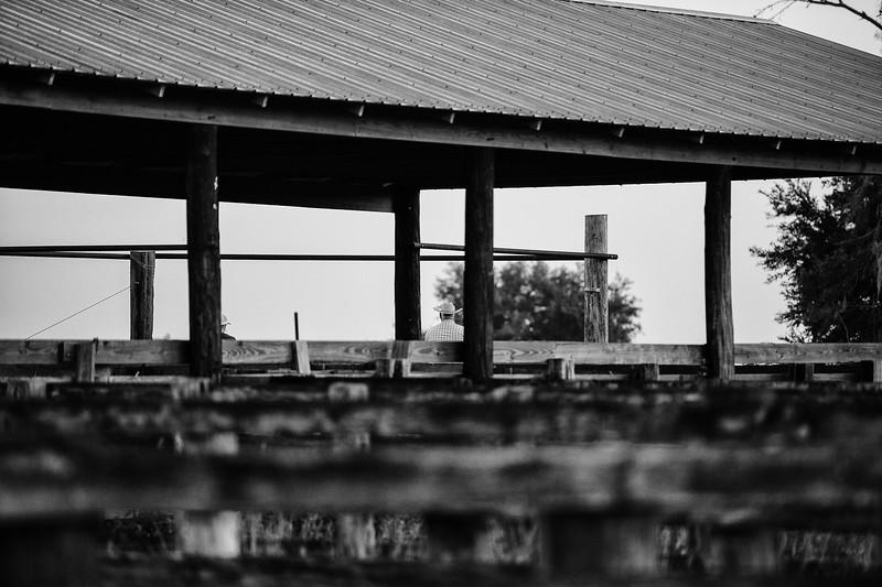 Breely Barthle Ranch B&W 2 (4 of 20).jpg