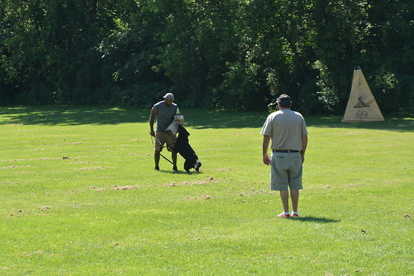 Indian Creek Schutzhund Club training, 07.08.18