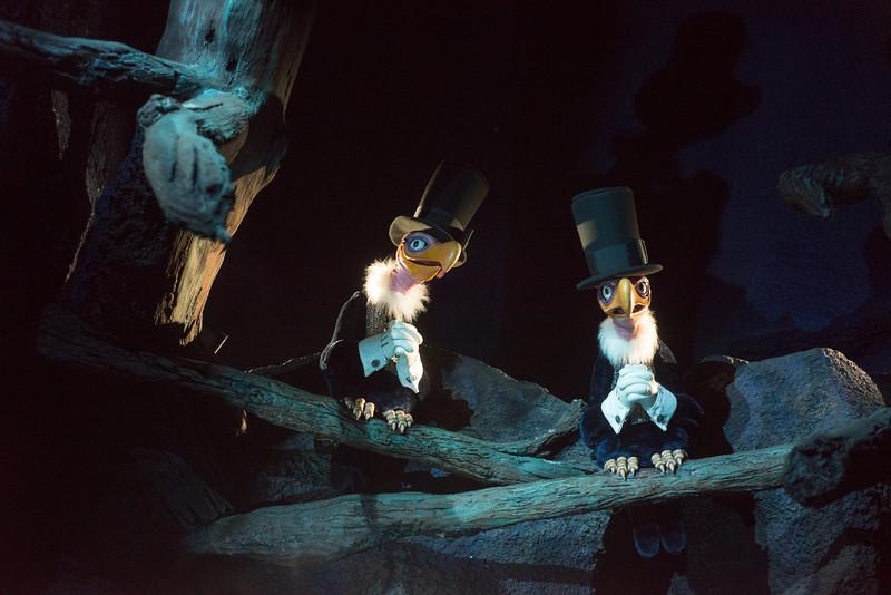Splash Mountain Vultures - Magic Kingdom Walt Disney World