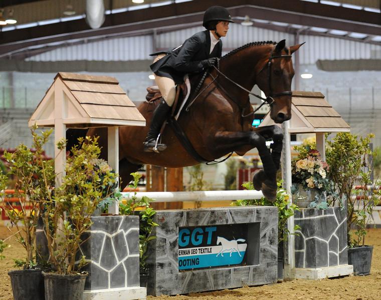 Horse show (63).jpg