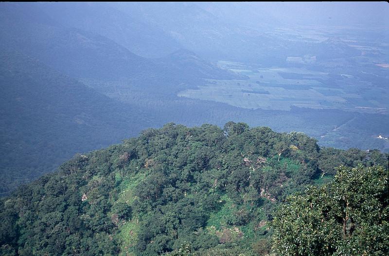 India2_031.jpg