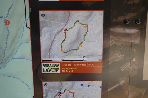 Bear Run Nature Reserve 3-7-8-2020