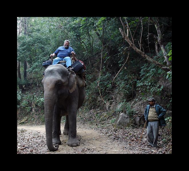 India - Tiger  Safari - 2006.JPG