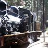 Yosemite Suger Pine Railroad