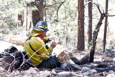 Wallow Fire, AZ, June 2011