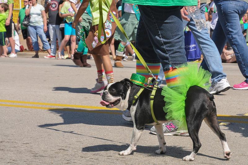 2013 Mansfield Pickle Parade-25.jpg