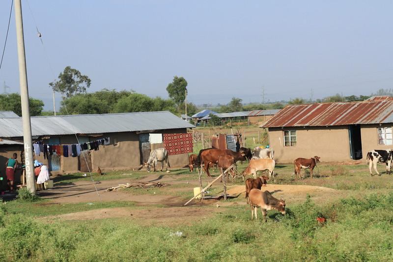 Kenya Part1 '15 2518.JPG
