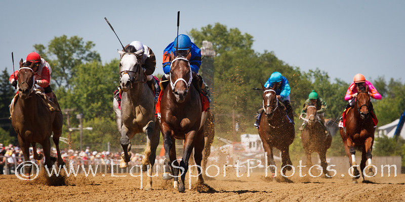 Hamazing Destiny (Salt Lake) wins the Maryland Sprint Handicap (G3) at Pimlico on 5.19.2012. Corey Nakatani up, D. Wayne Lukas trainer, Westbook Stables and Barry Butzow owners.