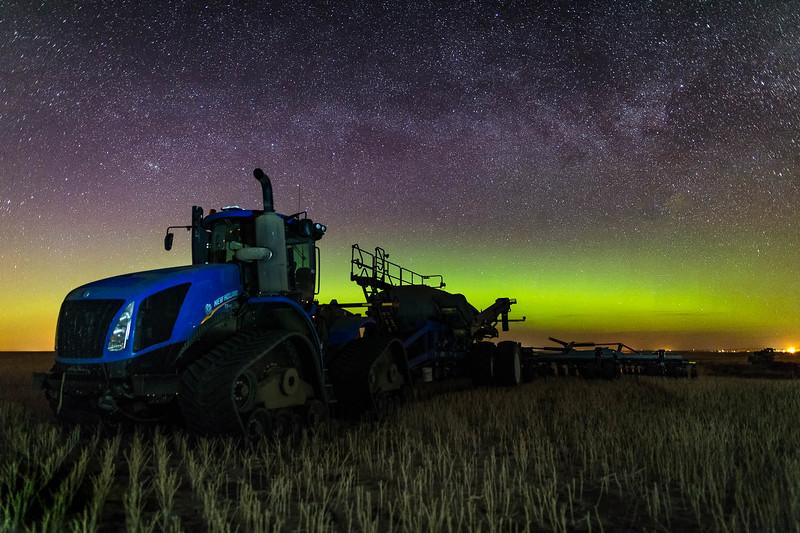barley 14.jpg