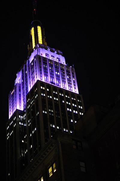 NYC High Lights.jpg
