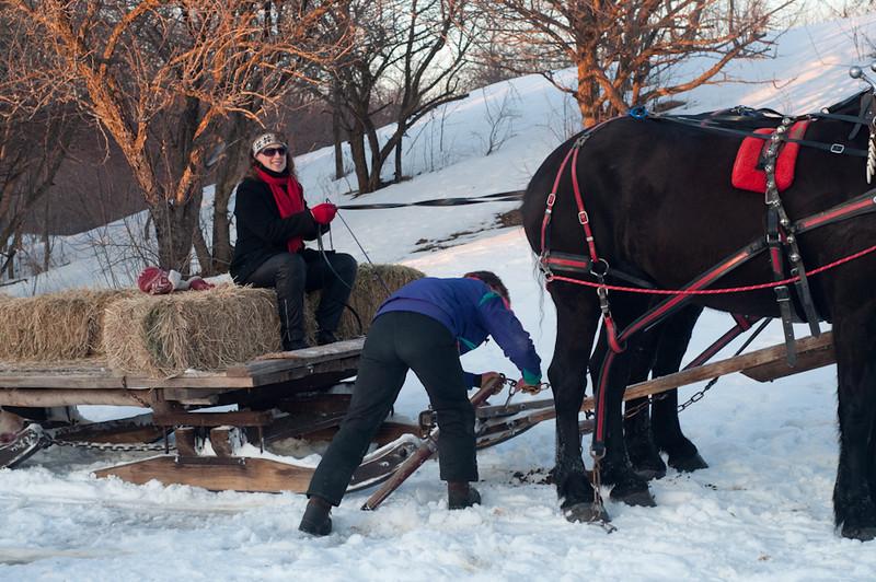 HorseRide-57.jpg