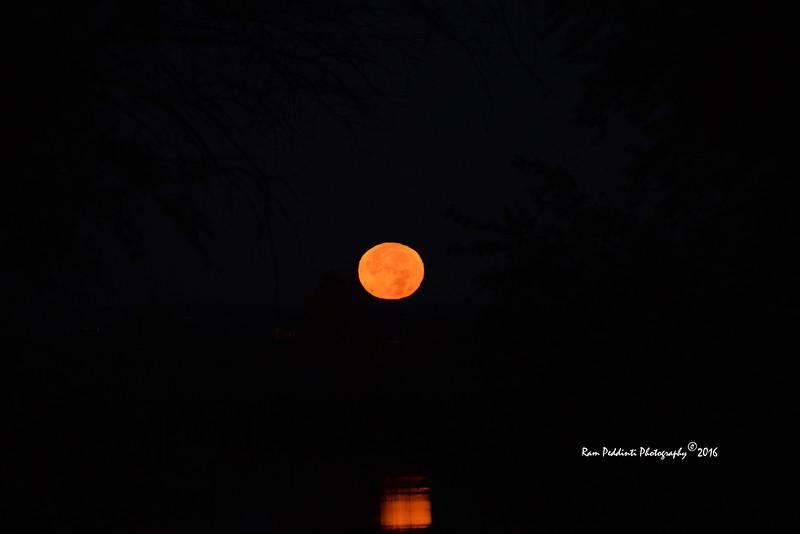 Full Moon_9971.jpg