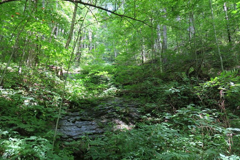 Hyatt Ridge Trail - 3,840'