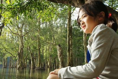 20131124 - Shing Mun Hike