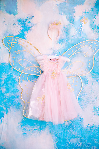 Pink Fairy Dress and Wings