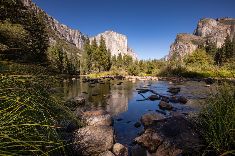 WVWS_Yosemite National Park-7049.jpg