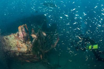 The Duckboard Wreck
