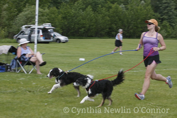 Candid dogs and their friends at Agility Trials!