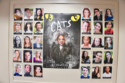 9-5-2019 Cats Preview Night @ Firehouse Theatre