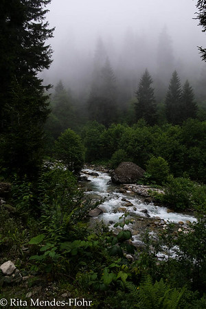 around Ayder - a magical walk through yaylas and forests