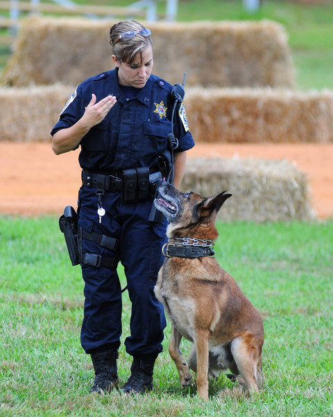 K9 Demo at Bowles Farm 2009