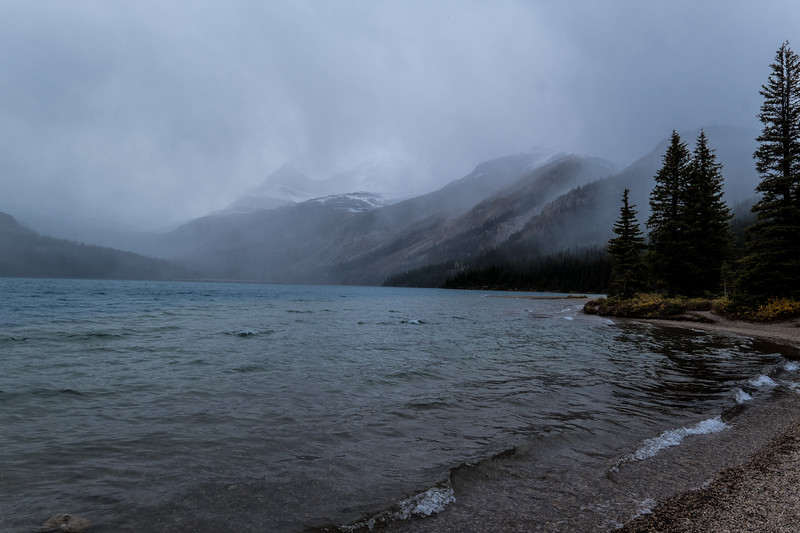Bow Lake in the mist