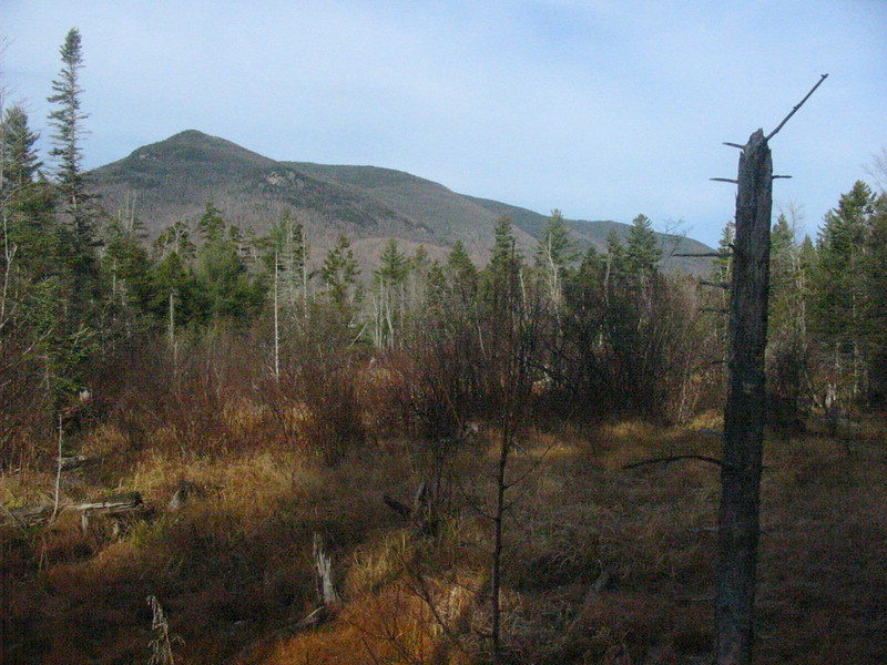 Owl's Head from an off trail section of the railroad.JPG