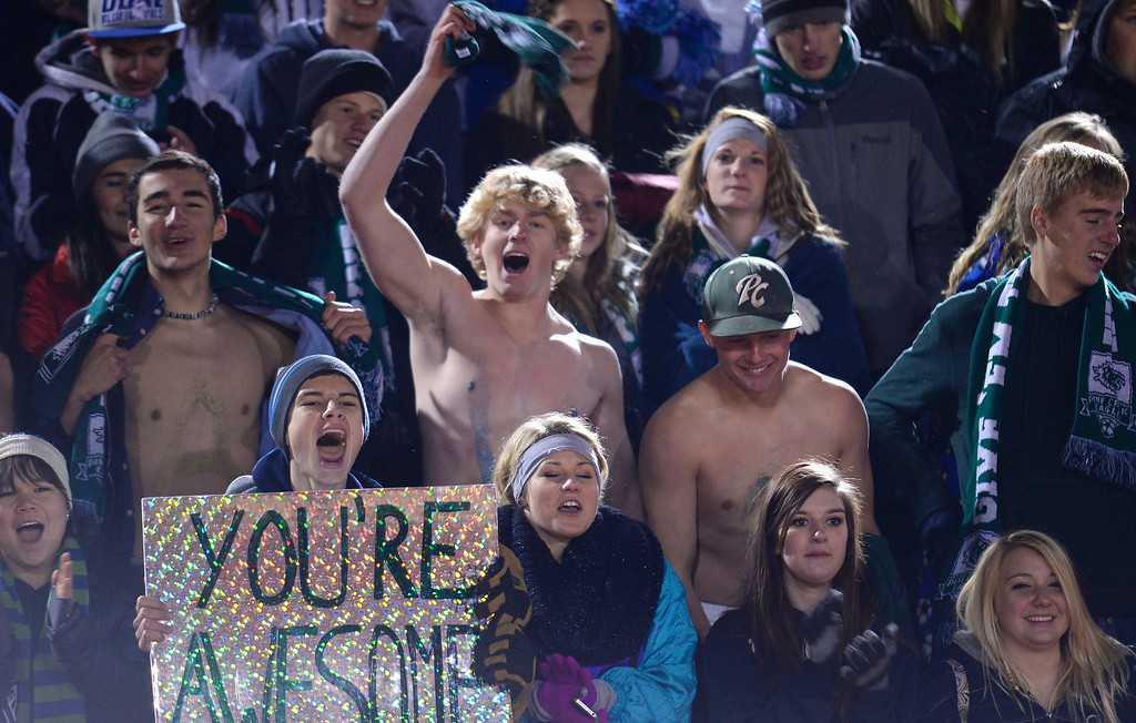 . Pine Creek High School students celebrate their team\'s win in the 5A state semifinal boy\'s soccer game against Boulder High School at Legacy Stadium in Aurora, Colorado, on November 6, 2013. Pine Creek won 1-0 in overtime. (Photo by Hyoung Chang/The Denver Post)